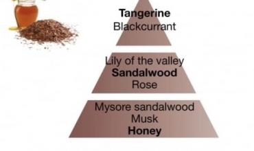 Lampe Berger Parfum van de Maand Sandalwood
