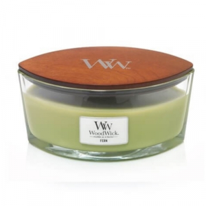 WoodWick Geurkaars Fern HearthWick Ellipse